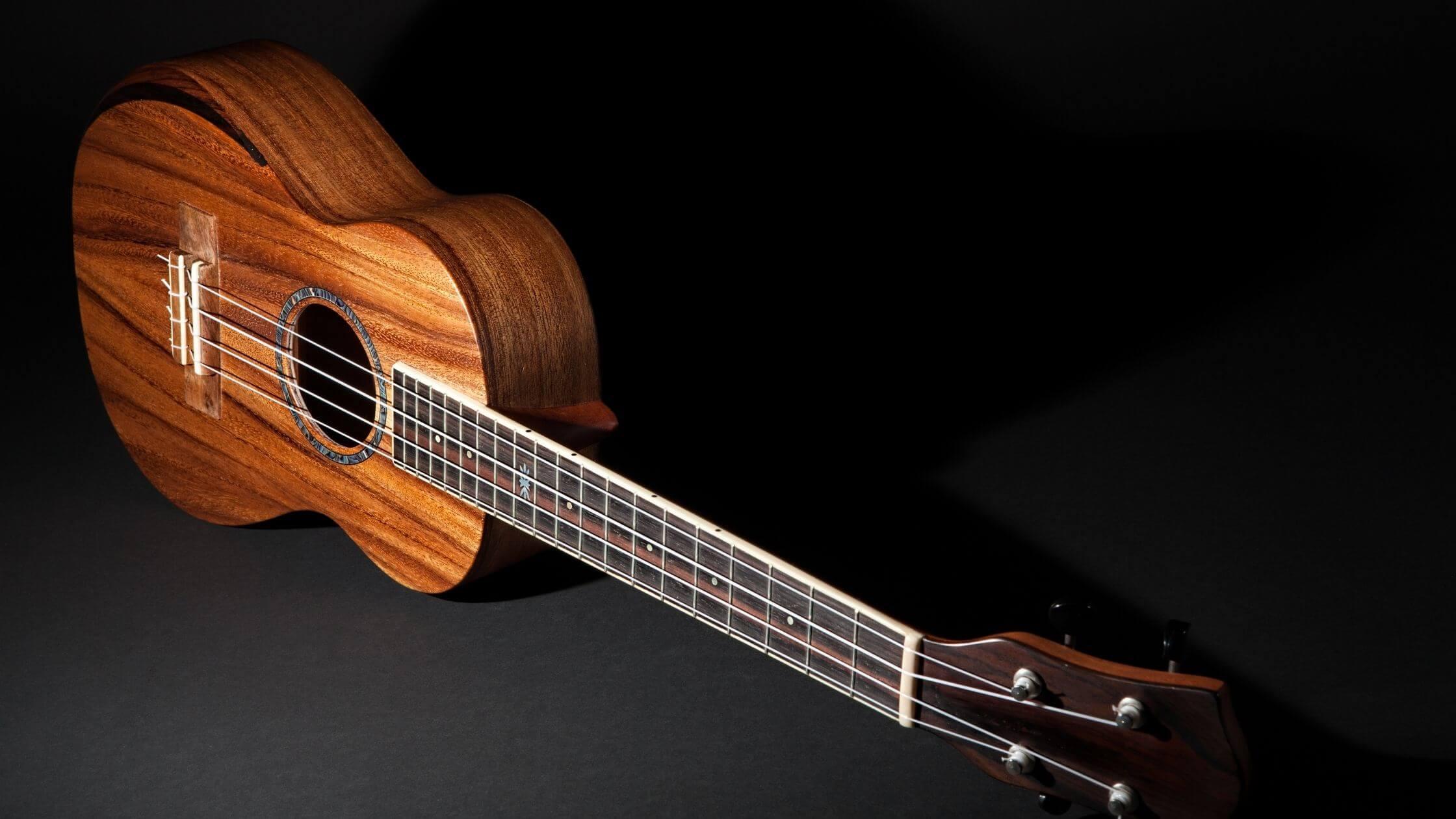 Best tenor ukulele under 200